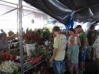 Hilo_market_2_1
